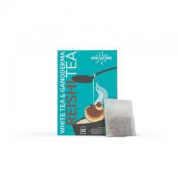 Reishi tea (Té blanco y ganoderma) 20 filtros Hifas da terra - Imagen 1
