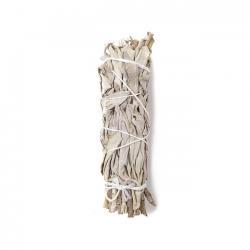 Atado Salvia Blanca Grande 22-23cm - Imagen 1