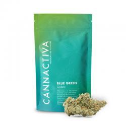 Flor de CBD Premium Blue Green-Gelato 2g Cannactiva - Imagen 1